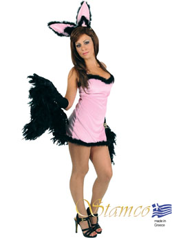 Costume Play Girl